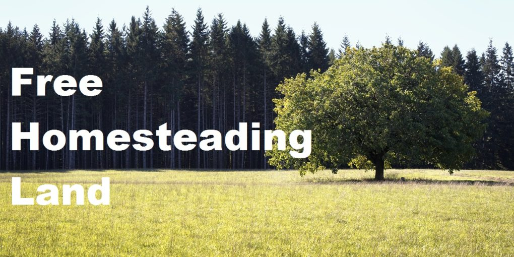 Homesteading Land